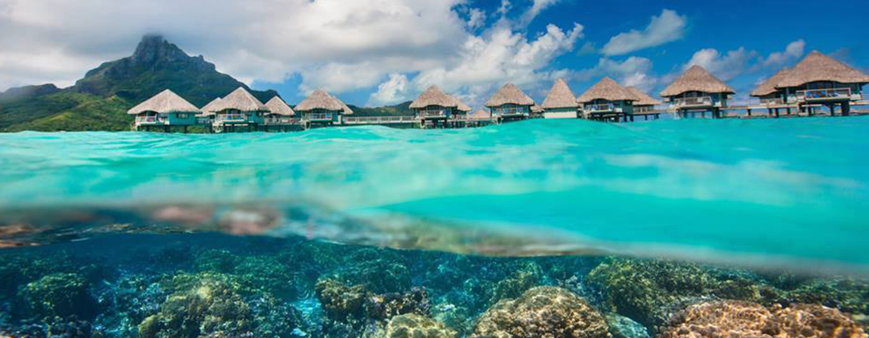 <h2>Bora Bora Honeymoon</h2><p>6 Nights in an Overwater Bungalow!<p><p class=price>From <strong>$4599</strong></p>