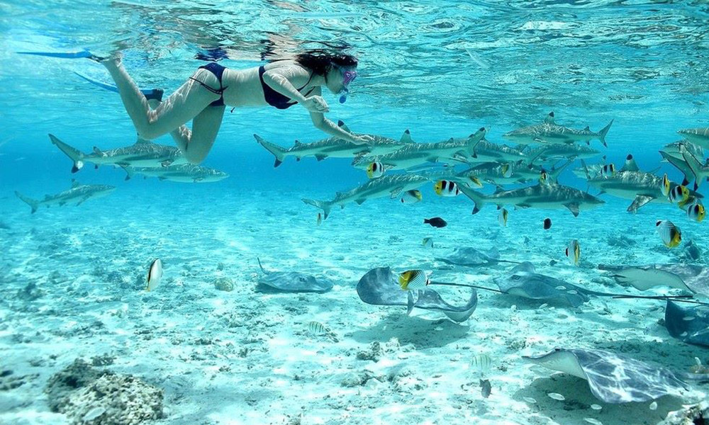 Bora Bora Activities Attractions And Things To Do Tahiti Legends