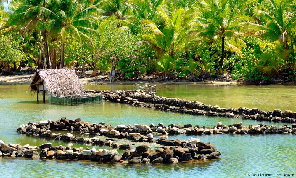 Ancient Fish Traps in Huahine