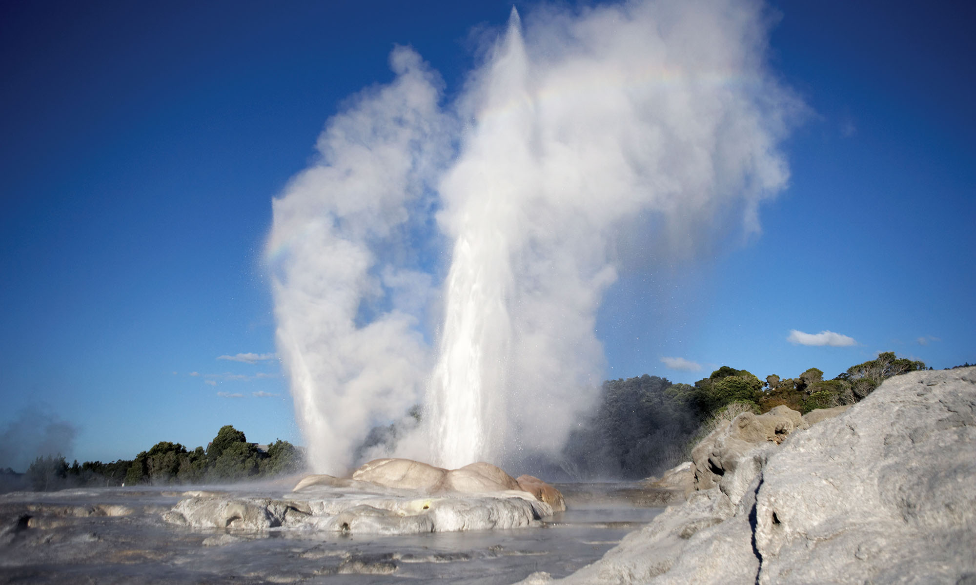Geyser in Te Puia Thermal Reserve, New Zealand