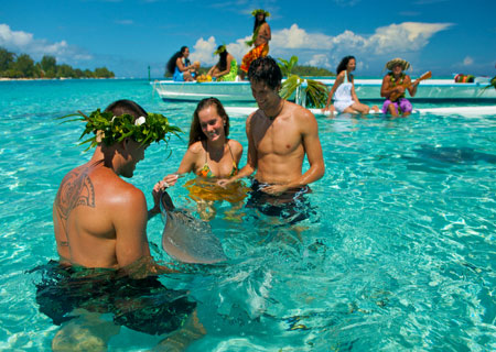 Bora Bora, Swim with the Sharks and Rays